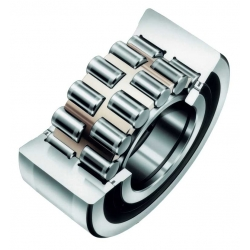 Double Row Cylindrical Roller Bearings ID over 150mm
