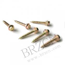 Coach screws