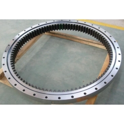INA Slewing Bearing