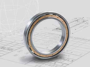Deep Groove Ball Bearing ID over 100mm